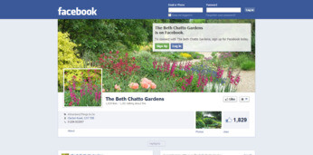 Discover the Beth Chatto gardens