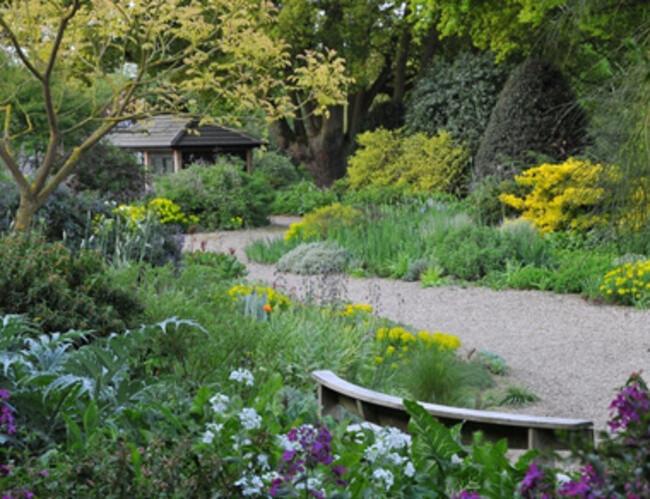 Beth chatto 39 s gravel garden for Garden pond gravel