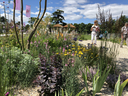 Hampton Court Palace Garden Festival – the plants!