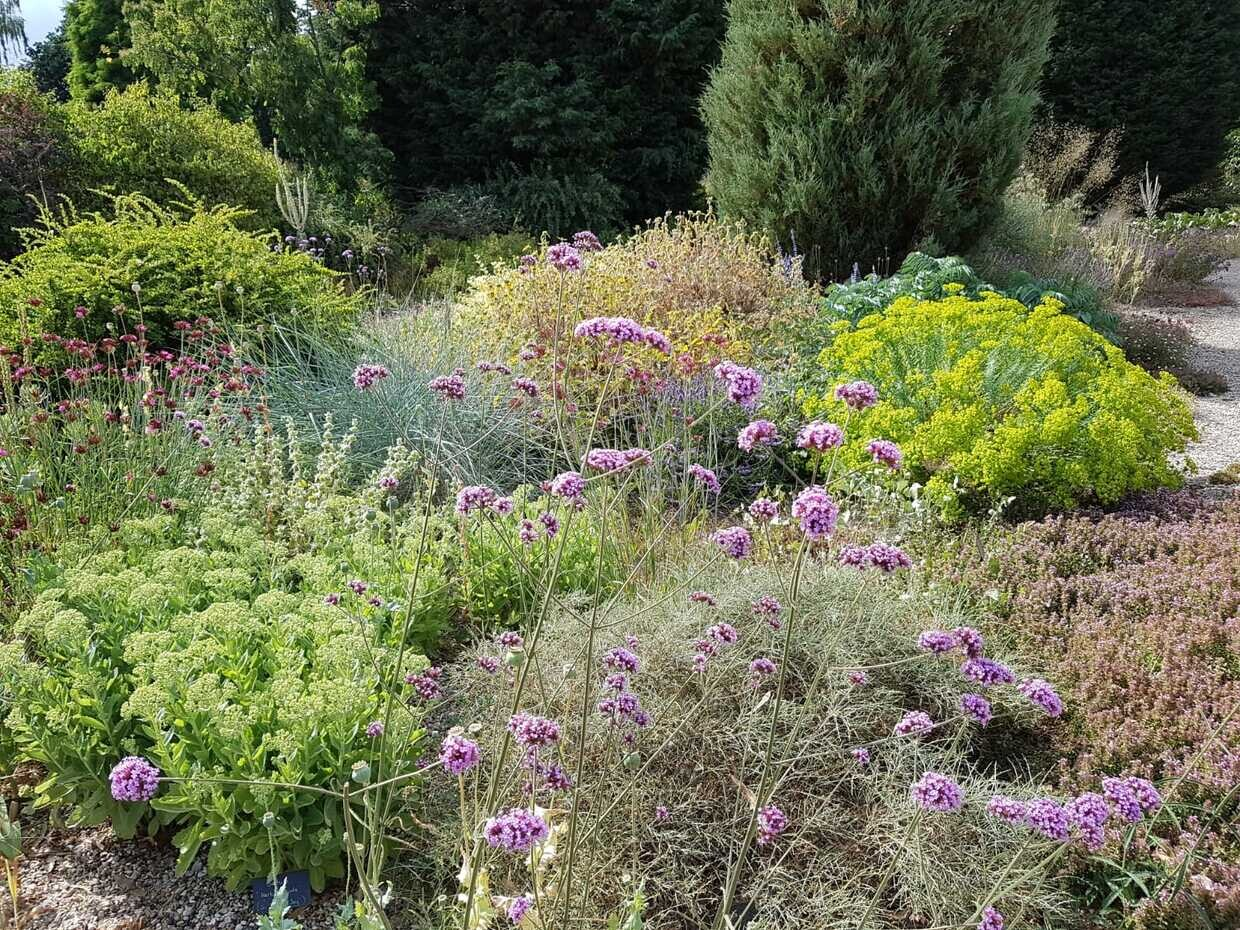 How the gardens are coping in these extreme conditions