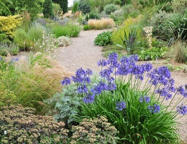 Beth Chatto S Gravel Garden