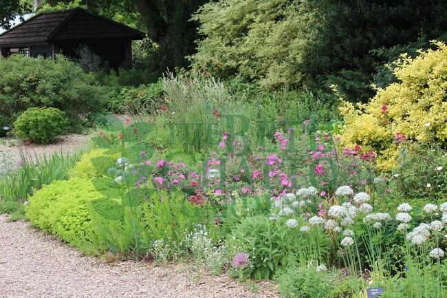Etonnant Gravel Garden